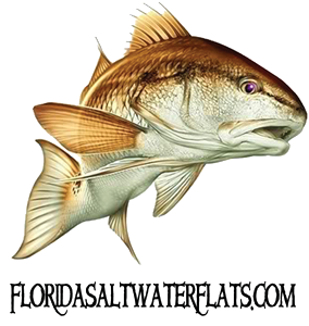 Guide information sea hag marina and the shacks at sea hag for Florida non resident saltwater fishing license