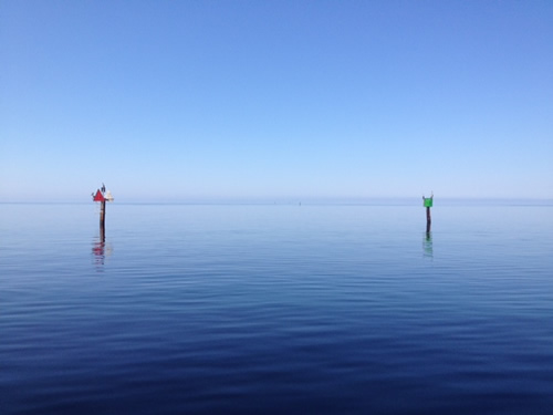 Fishing and scalloping in steinhatchee sea hag marina for Steinhatchee fl fishing