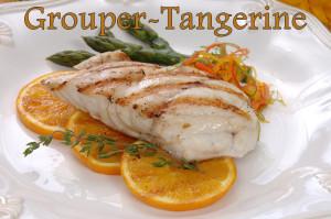 Grouper-Tangerine2