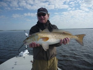 Fred Alt, visiting from Massachusetts, found this perfect 27 inch redfish near Big Grass Island, also on a topwater plug.