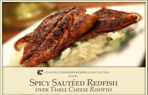 Spicy Sauteed Redfish