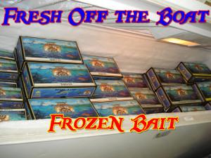Fresh Bait2
