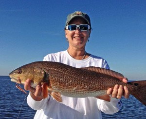 Jan Barnett and Glen Maddox fished with me and Jan found this excellent redfish.