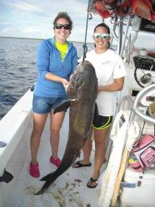 Pippa and Elicia both had to work to land this 74 pound cobia, fishing with Capt. Brian Smith.