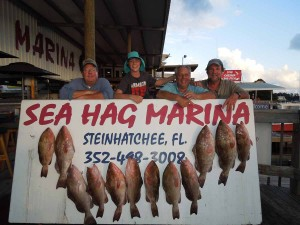 Steve Hess, Buddy Mueller, Scott Bly and Brad Mueller were fishing for red grouper in 60 feet of water and had a good day.