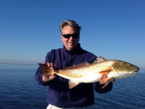 Old friend Phil Evans found this beautiful red north of the Steinhatchee River