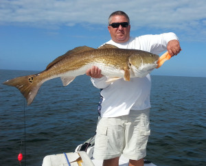 More bull redfish, this one nailed by Scott Rauch.