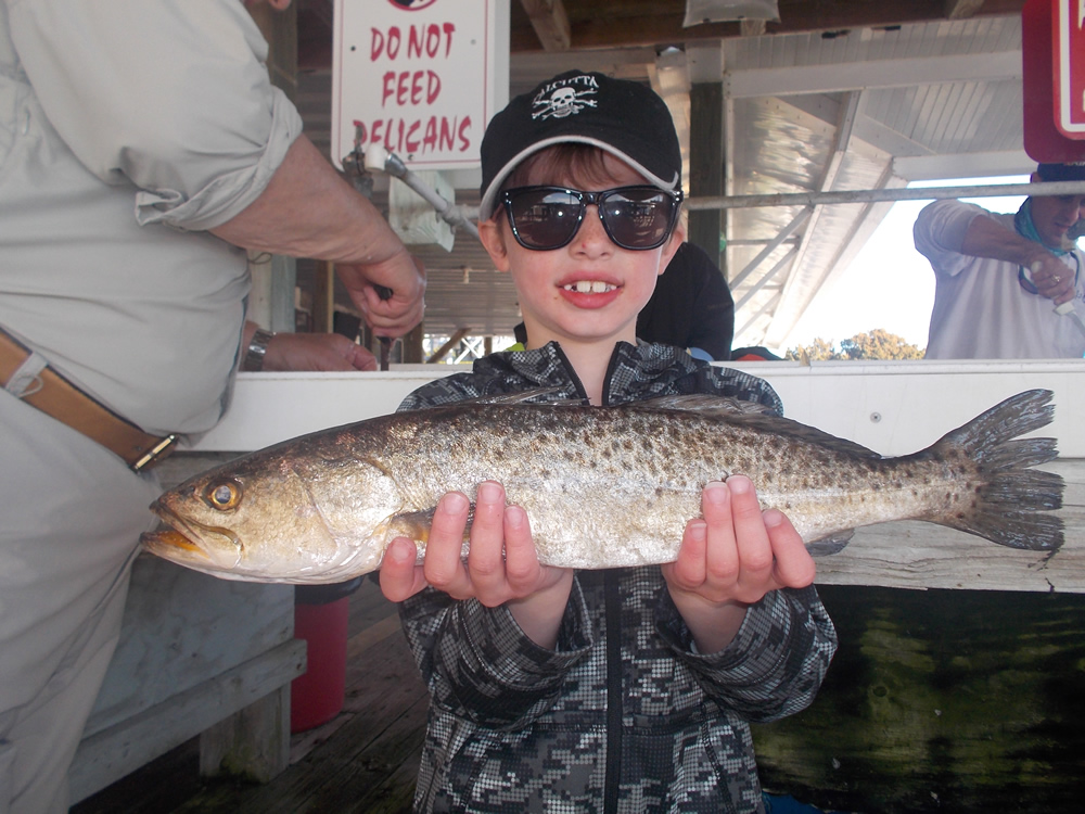 Corbin mackey from gainesville fl caught this big trout for Fishing in gainesville fl