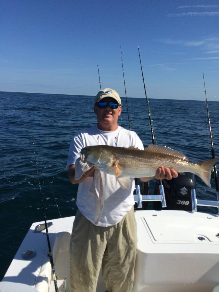 Mark stubbs from gainesville fl landed this deepwater for Fishing in gainesville fl