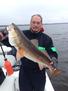 Bob Barnett fished out of Keaton Beach and came up with this overslot redfish.