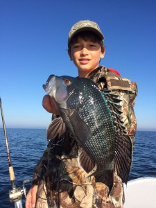 Chase Norwood fished in 30 feet of water to find a bunch of these giant black sea bass.