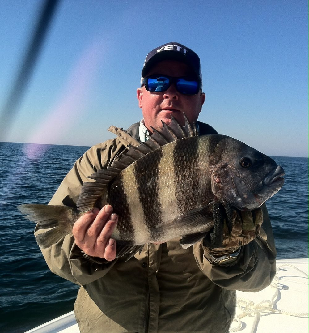 February 2014 fishing report and forecast sea hag marina for Sheepshead fish eating
