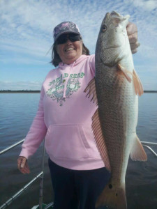 Debbie Singletary from Keystone Heights used Randy Harris' airboat to find this overslot redfish.