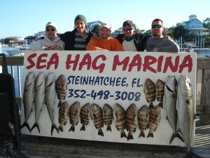 On a charter out of the Sea Hag, Mark Shuford, Jordan Whitmire, Alex and Michael Mamas and Chris Smith scored these beautiful sheepshead and amberjack.