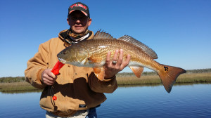 Robert Tipton found this beautiful redfish near Big Grass Island, fishing with a Gulp shrimp.