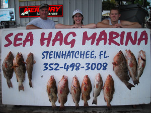 Jim Sochaki and his crew found these fine red grouper in 70 feet of water.