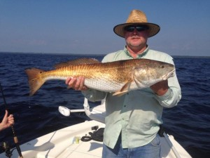David Holt nailed this overslot 36 inch redfish.