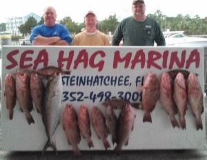 How about this mixed offshore catch of red grouper,  mangrove snapper and one nice amberjack? Dean Baker, Frank Sheffield, and Glenn Corbett from Starke are responsible.