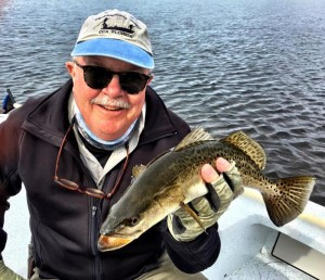 ...and Capt. Thompson this nice trout in 2 feet of water, both on topwater plugs.