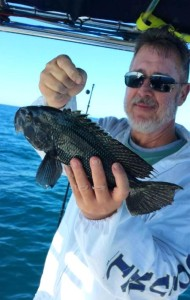 Derek Simpson with a fine example of a very tasty black sea bass.