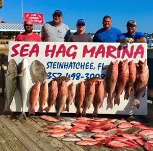 If you're willing to go way way offshore, like the Corbett group, you'll find lots of big red grouper, amberjacks, cobia and snapper.